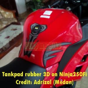 Tankpad 3D Kawasaki di Ninja250Fi_1