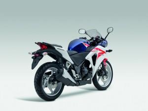 Tampilan belakang Honda-CBR250R 2011 dengan spakbor standar pabrikan. Emang sih kurang sporty ya keliatannya?